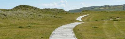 a path around mountains